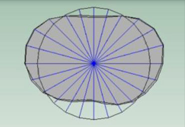 Oval Mode Shape in Hot and Cold Condition Overlaid